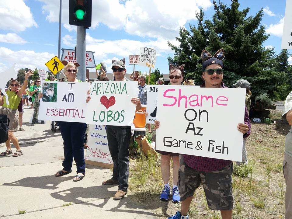 September 2015 nutrioso arizona for Arizona fish and game